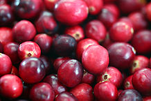"""Cranberries20101210"" by Cjboffoli - Own work. Licensed under Creative Commons Attribution 3.0 via Wikimedia Commons - http://commons.wikimedia."