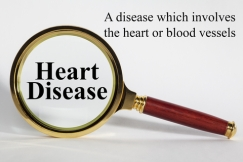© Travelling-light | Dreamstime.com - Heart Disease Concept Photo